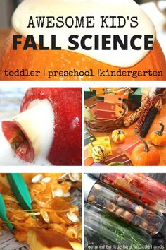 Awesome kid's fall science activities collection perfect for fall themes science activities including apples, pumpkins, leaves, acorns, as well as Thanksgiving themed ideas. These fall science ideas are perfect for kids ages Science activities for to Science Activities For Toddlers, School Age Activities, Lesson Plans For Toddlers, Autumn Activities For Kids, Fall Preschool, Preschool Lesson Plans, Thanksgiving Activities, Preschool Science, Science For Kids