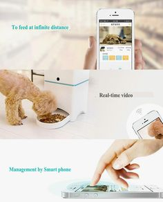 Automatic Pet Feeder controlled With Your Smart phone      >>>>> Buy it now    http://amzn.to/2cT2RYn