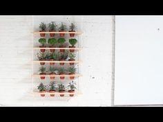Como fazer Jardim Suspenso - DIY & Crafts - Handimania