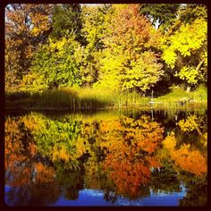 #Autumn colour on the Pigeon River in #Omemee #Ontario #Canada
