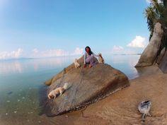 Koh Panghan, Thailand Travel Around The World, Around The Worlds, Thailand, Artist, Artists