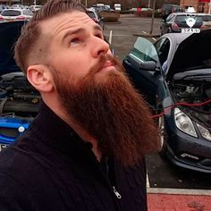 Hot Beards, Grey Beards, Bald With Beard, Full Beard, Hairy Men, Bearded Men, Well Groomed Beard, Long Hair Beard, Hipster Beard