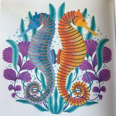Forêt tropicale de Johanna basford  Aux crayons de couleurs Fabre Castel polychromos