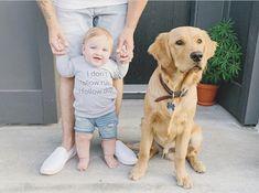 Dogs, Animals, Instagram, Animales, Animaux, Doggies, Animal, Animais, Dieren