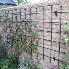 Metal Garden Wall Trellis Panels - Steel Rod Lattice
