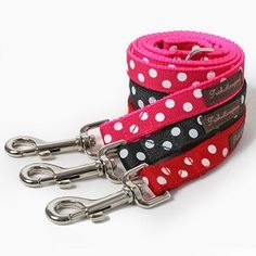 Polka Dot dog leash.... I have the pink one for my dog x