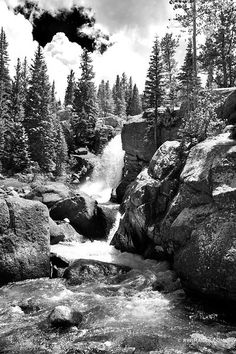 ALBERTA FALLS ROCKY MOUNTAIN NATIONAL PARK COLORADO BLACK AND WHITE VERTICAL Fine art photography framed picture canvas metal acrylic fine art print stock photo image keywords: AMERICA, AMERICAN, AMERICAN MOUNTAIN LANDSCAPE, ART, ARTISTIC ROCKY MOUNTAINS COLORADO PHOTOGRAPHY, ARTWORK, BUY ROCKY MOUNTAINS COLORADO PHOTOGRAPHIC PRINTS FINE ART FOR SALE, CO, COLORADO, COLORADO COMMERCIAL CORPORATE ART CONSULTANT, COLORADO COMMERCIAL INTERIOR DESIGNER, COLORADO HOME DECOR ART, COLORADO… Mountain Photography, Fine Art Photography, Landscape Photography, Pictures Images, Print Pictures, Buy Photos, Stock Photos, Rocky Mountains Colorado, Rocky Mountain National Park