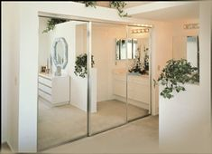Exceptionnel Uses Of Mirror Closet Doors
