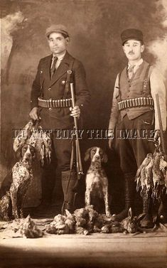 Image result for antique photo german shorthaired pointer