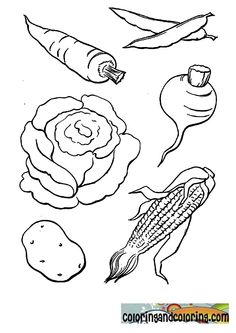 vegetablestocolor coloring and coloring pages