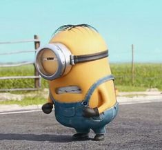 Bad Minion, Minion Rush, Cute Minions, Minions Despicable Me, Minions 2014, Funny Minion Pictures, Weird Pictures, Funny Photos, Minion Words