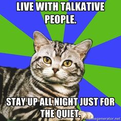 We need more introvert cat on here! - Imgur