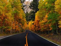 24 Beautiful and Splendid Fall Photography