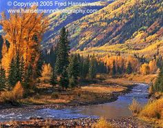 Crystal River in Autumn, Near Aspen, Colorado