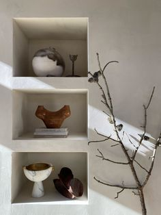 Foraging in Nature Built In Shelves Living Room, Bachelorette Pad, Bookshelf Design, Organic Modern, Take Me Home, Home Decor Trends, Decoration, Interior Styling, Interior And Exterior