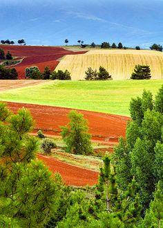 Soria, Spain.  Spanish countryside