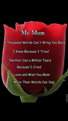 i love you mom mom 1000 words and 1 million tears will not bring you back Ive already tried. Love and miss you mom so much Missing Mom Quotes, Mom In Heaven Quotes, Rip Mom Quotes, Miss You Mom Quotes, Missing Mom In Heaven, Strong Quotes, Mother Quotes, Daughter Quotes, Mom Daughter