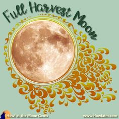 The Harvest Moon reaps our physical & spiritual harvests. Harvest Time, Harvest Moon, Full Moon Names, Howl At The Moon, Wicca, Physics, Thursday, Gardens, Physics Humor