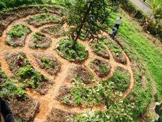 What is Permaculture? Gnome Garden, Edible Garden, Garden Planters, Vegetable Garden, Permaculture Design, Felder, Garden Planning, Garden Landscaping, Garden Design
