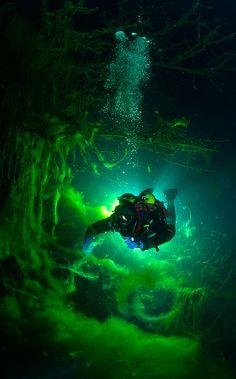 #Diving