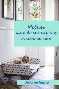 Интерьер квартиры и место для собаки