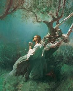 God's powers & miracles in pictures   Mormon View of Jesus Christ