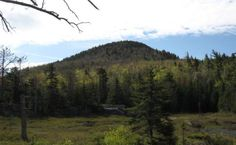 Crane Mountain - Adirondacks Hiking Info & Hikes In The Lake George NY Region