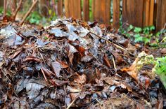 Build Soil Quality with Dried Leaves (via HipChickDigs) - an inexpensive and organic way to break up tough soil.