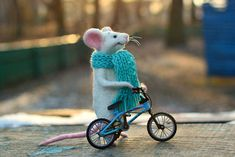 Mouse and bike. The mouse size about 5 inches or 13 cm. The mouse made from wool; paws and tail on the wire, glass eyes. Velocipede from plastic and metal. In stock only a green, a blue and a light blue bikes. PLEASE NOTE! Toy contains small parts, not intended for children to play,