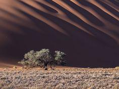 A Slight Trick of the Eye by Stas Bartnikas via National Geographic | Namib Desert, #Namibia