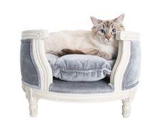 Giorgio Luxury Pet Sofa | Passerinicasa.com. For a royal Cat. #Ilovemycat