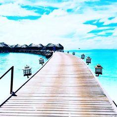 The  is our Runway ! #gorgeousgirlsonthego #gorgeousgirlsgetaway #gorgeousgirlapproved #paradise #escape #traveltuesday #thanksgiving #travel #adventure #lovemyjob #maldives #islandlife