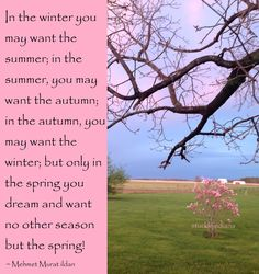 """""""In the winter you may want the summer; in the summer, you may want the autumn; in the autumn, you may want the winter; but only in the spring you dream and want no other season but the spring!"""" ~ Mehmet Murat ildan #quote"""