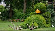 oiseautopiaire01b