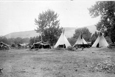 "Nez Perce Encampment 1899. Nimi'ipuu, which means the ""real people"" or ""we the people."" Pinned by indus® in honor of the indigenous people of North America who have influenced our indigenous medicine and spirituality by virtue of their being a member of a tribe from the Western Region through the Plains including the beginning of time until tomorrow."