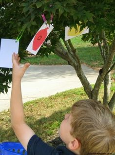 {Sight Word Game} Apple Tree Words by JDaniel4's Mom