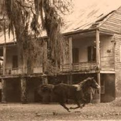 Old Darby House, New Iberia, La. No longer standing. (This house belonged to my grandmothers family; the Darby's.)