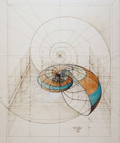 Gallery of This Architect Fuses Art and Science by Hand Illustrating the Golden Ratio - 13