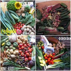amberlight-label: Solidarische Landwirtschaft Schellehof August 2015 September, Label, Vegetables, Sustainable Farming, Harvest, Garten, Vegetable Recipes, Veggie Food, Veggies