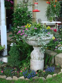 My birdbath refused to hold water so it became my newest flower pot. - Fine Gardening