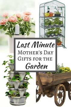 top mother's day gifts 2017 - 30 best gift ideas | gift, holidays