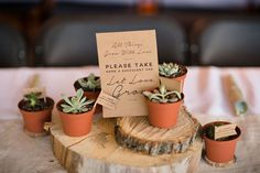 All Things Grow With Love Sign for Succulents  by SarahPhilDesigns