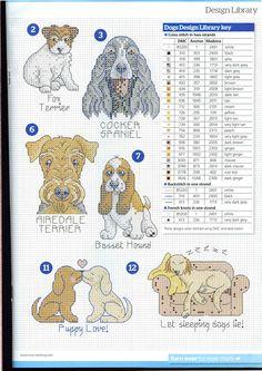 Hunde ... 212446-0ef3f-60772598-m750x740-u30f31.jpg (523×740)
