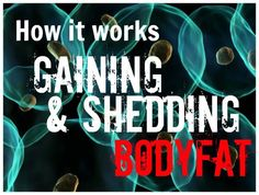 Fat & Fuel - How It Works It Works, Fat, Advice, Fitness, Tips, Nailed It