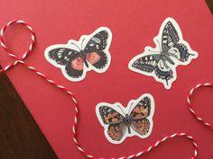 Butterfly sticker sheet | Etsy  #stickers #stickersheets #sticker #etsy #etsyshop #butterfly #butterflies #illustration #stationery Vinyl Paper, Plant Illustration, Stationery, Butterfly, Hand Painted, Etsy Shop, Illustrations, Stickers, Prints