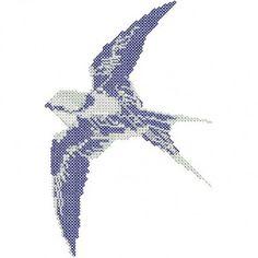 Bird - White-Backed Swallow in Flight