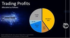 What Is Online Investing? - Investing with MTI - My Honest Review Pyramid Scheme, Bitcoin Wallet, Leadership, Investing