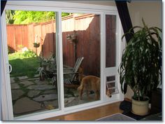 Dog Doors For Sliding Glass Doors: It Will Be Harder If We Need To  Disassemble The Sliding Door And Make Some Modification Into Our Sliding  Door Just For ...
