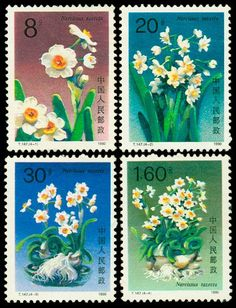 postage stamps from china | 1990 - China Postage Stamps Narcissus Flower Stamp designed ... | Sta ..
