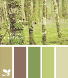 Houses painted in any of these moss color charts are very soothing. So using these colors in my future house